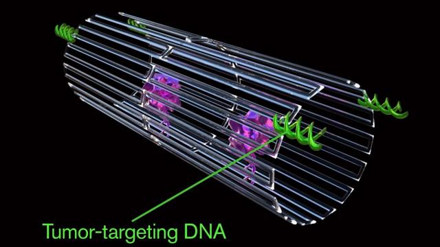 Using Nanotechnology to destroy cancer