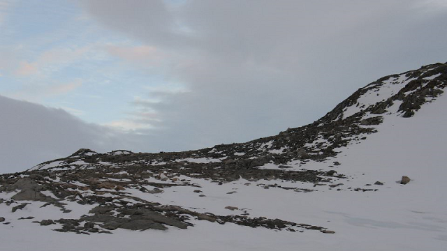How Antarctic microbes survive on thin air