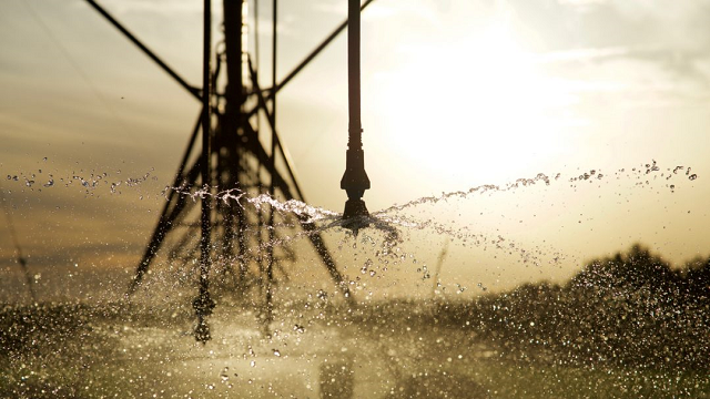 Increased irrigation efficiency actually reduces available water