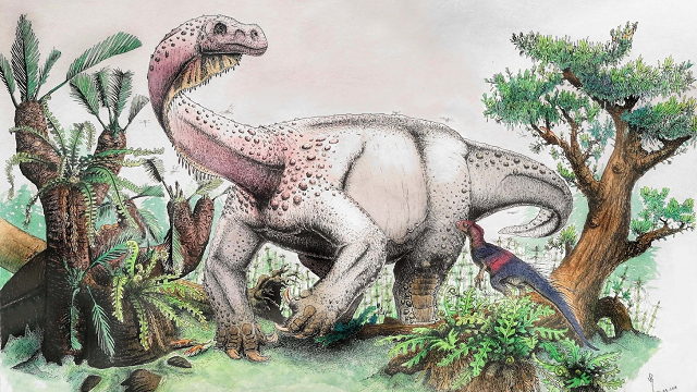 Meet the grandparent of the Brontosaurus