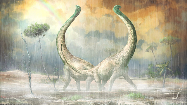 New titanosaur fossil sheds light on dino evolution