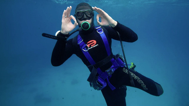 The marine biologist who is sharks' best friend