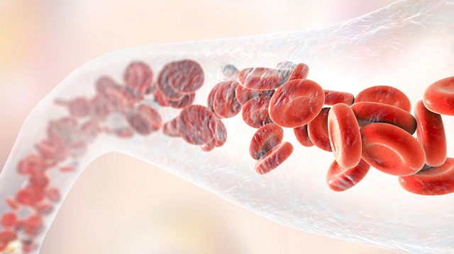 Researchers bio-engineer blood vessels that are self-sustaining