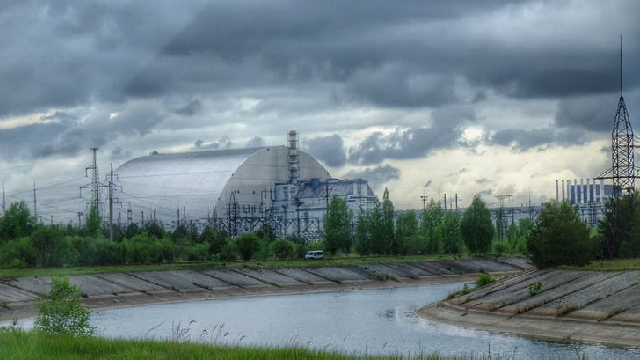 Chernobyl is now a hugely important wildlife refuge