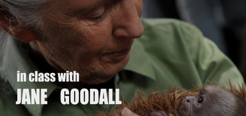 In Class With….Jane Goodall