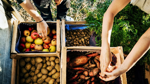 For food production, diversity brings strength
