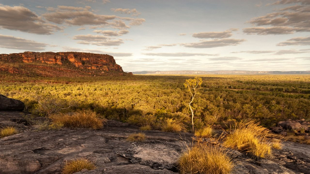 Australia, US and Brazil lead the world in weakening national parks