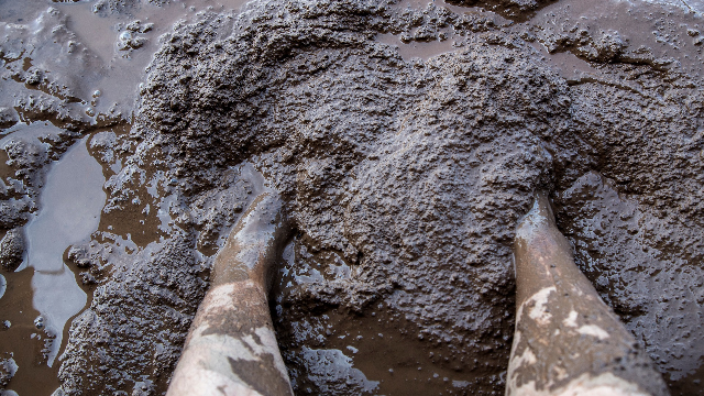 Pain relief may be found in the mud