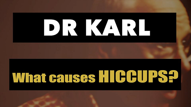 Dr Karl – What causes Hiccups?
