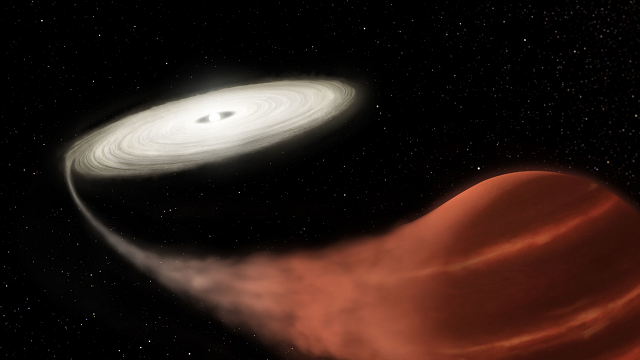 A vampire star has been spotted sucking the life from its victim