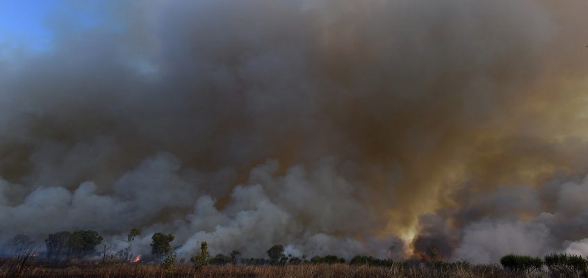 The best fire management system is in northern Australia and it's led by Indigenous land managers