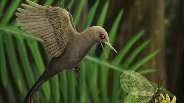 Tiny bird-like dinosaur smallest ever found