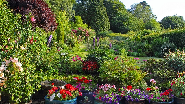 Your backyard could help reduce global warming