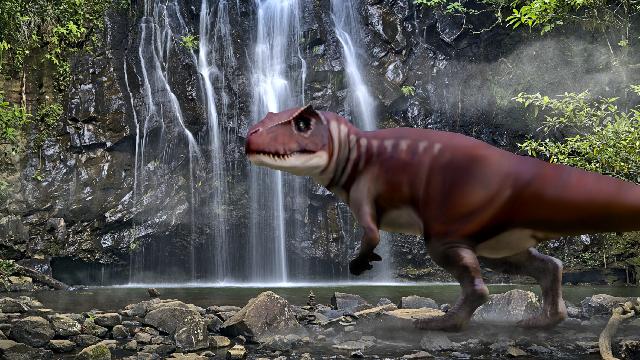 Dinosaur footprints show predators as big as a T. rex stomped across Australia 160 million years ago