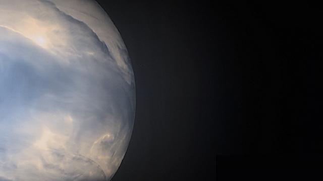 Venus keeps teasing us about life
