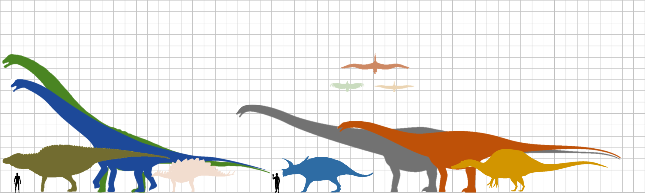 scale of the size of dinosaurs compared to an average human