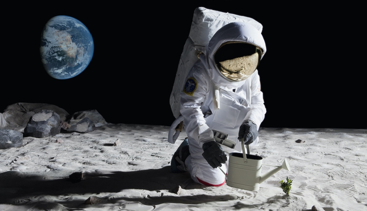 Astronaut watering a small plant on the surface of the Moon with the Earth in the background.