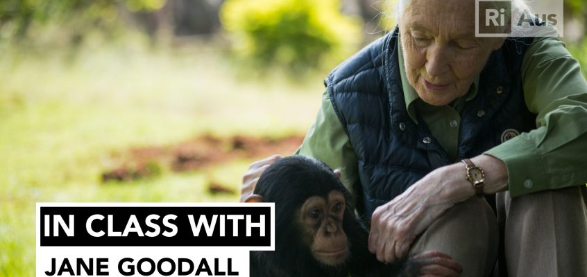 In Class With… Jane Goodall