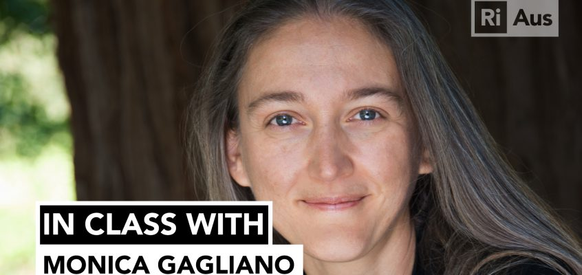 In Class With… Monica Gagliano