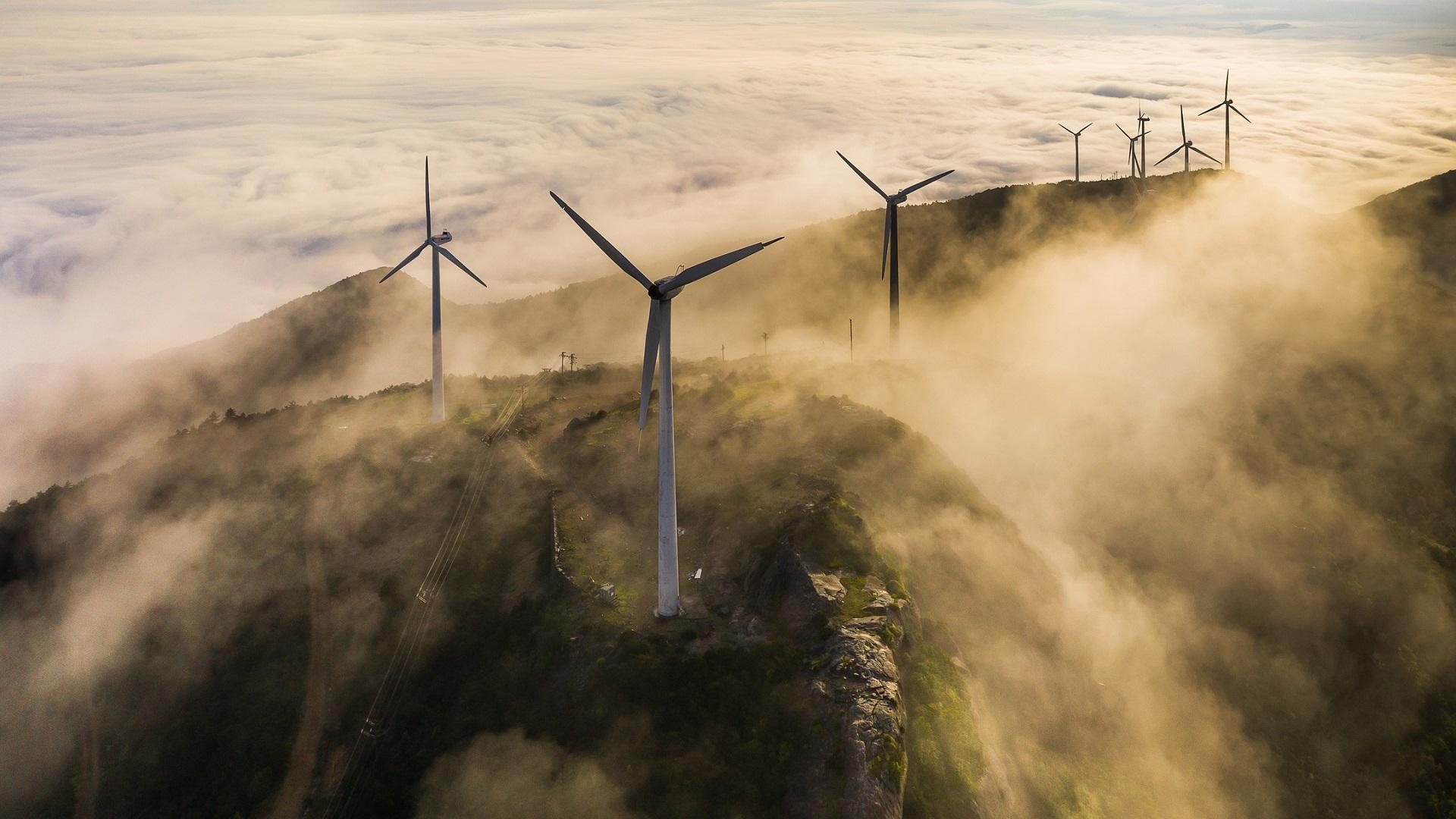 Wine turbines on hills