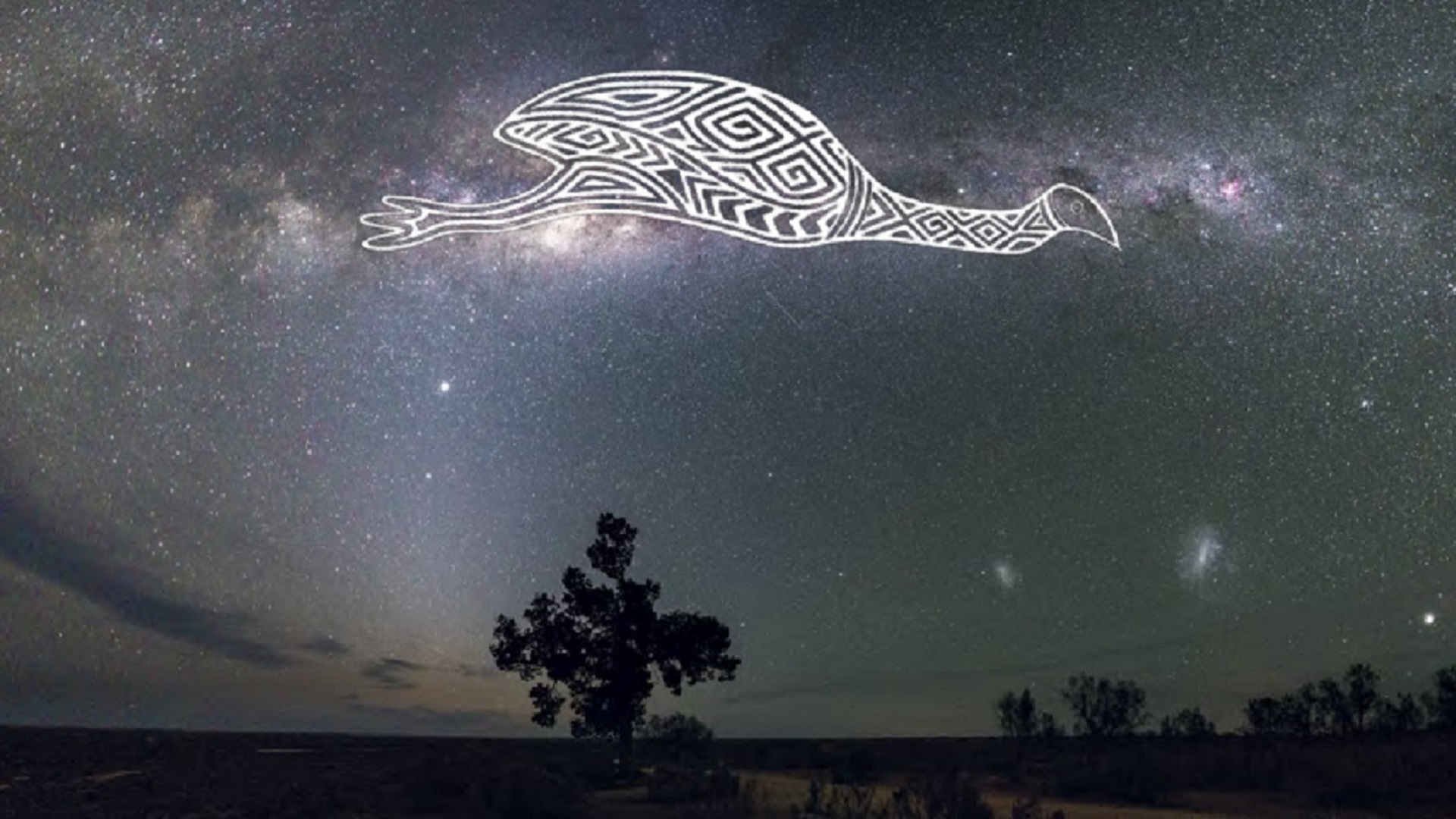 Drawing of emu across milky way