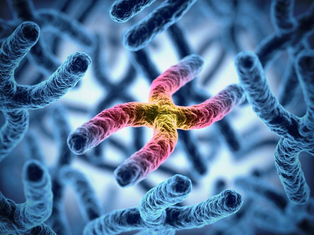 3D illustration of chromosomes