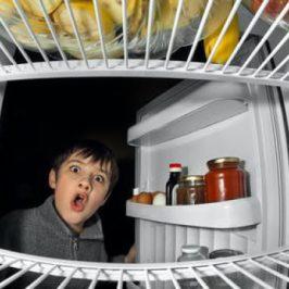 Child looking in the fridge freezer