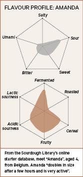 Flavour profile of a sourdough starter, Amanda.