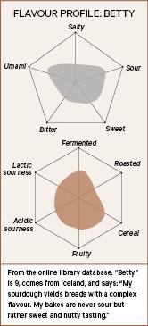 Flavour profile of a sourdough starter, Betty.