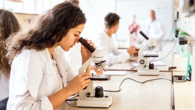 Thinking of choosing a science subject in years 11 and 12?